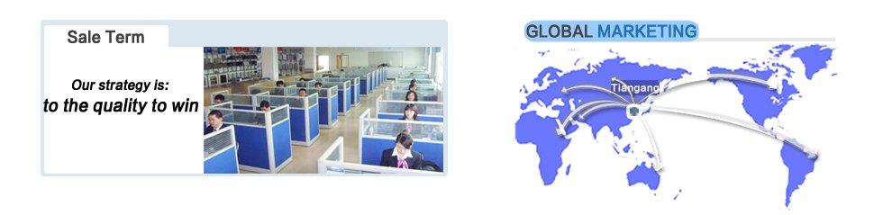 term globalization
