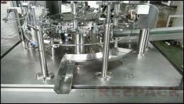 Automatic Rotary Preformed Bag Packing Machine