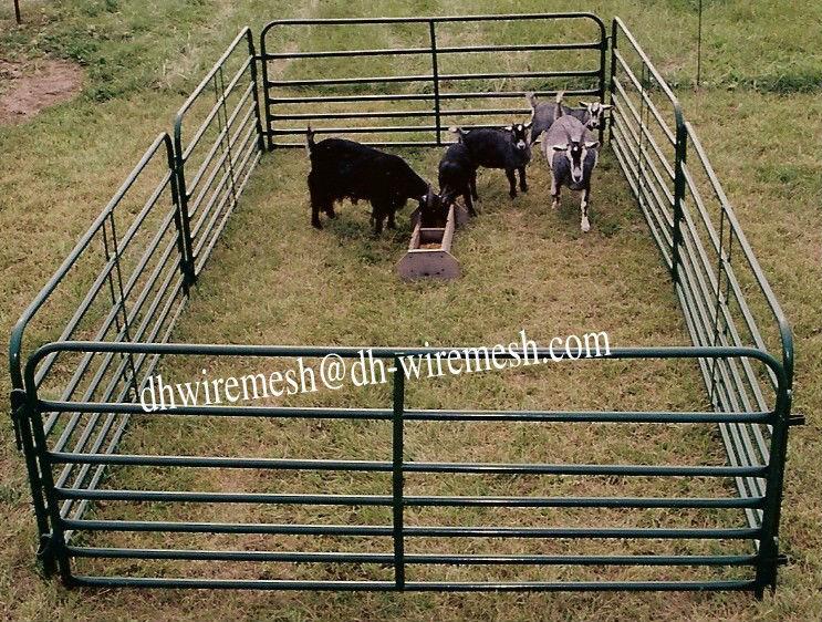 Cattle Pen Portable Goat Fence Panel Factory Buy Cattle
