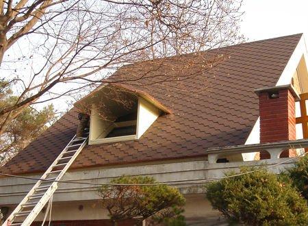 Fish scale asphalt shingles tile roof buy roof bitumen for Fish scale shingles
