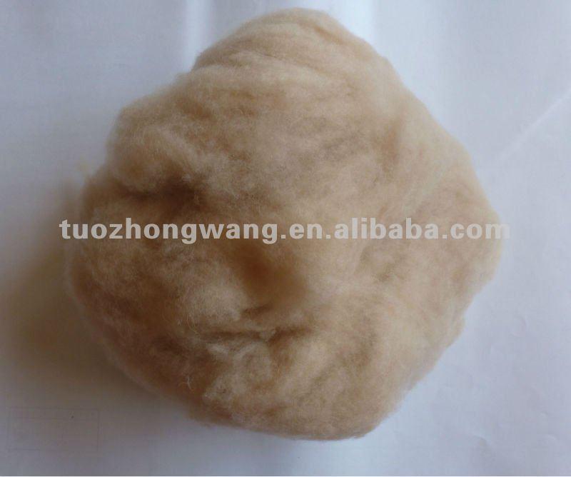 Dehaired Camel Hair From Alxa,Inner Mongolia - Buy Camel ...