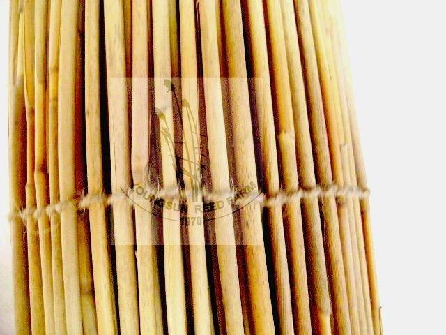 Bamboo Reed Screening Rolls Buy Bamboo Reed Screening Bamboo Fencing Roll B