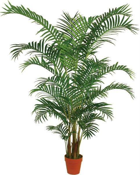 Botella grande palmera artificial buy product on - Palmeras de plastico ...