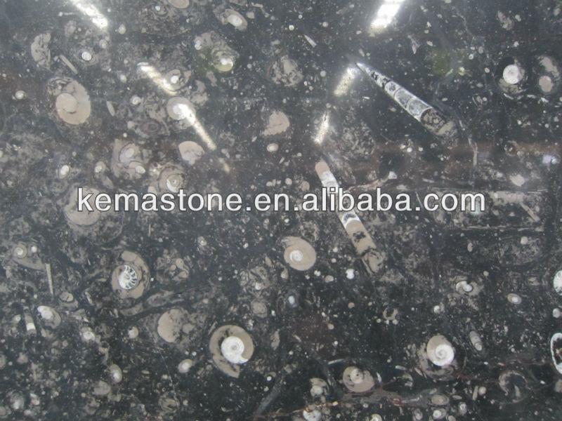 Moroccan Ocean Jura Black Marble Fossil Stone Slabs Buy