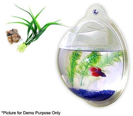 Aat 315 wall mounted acrylic fish bowl tank mini wall for Wall mount fish bowl