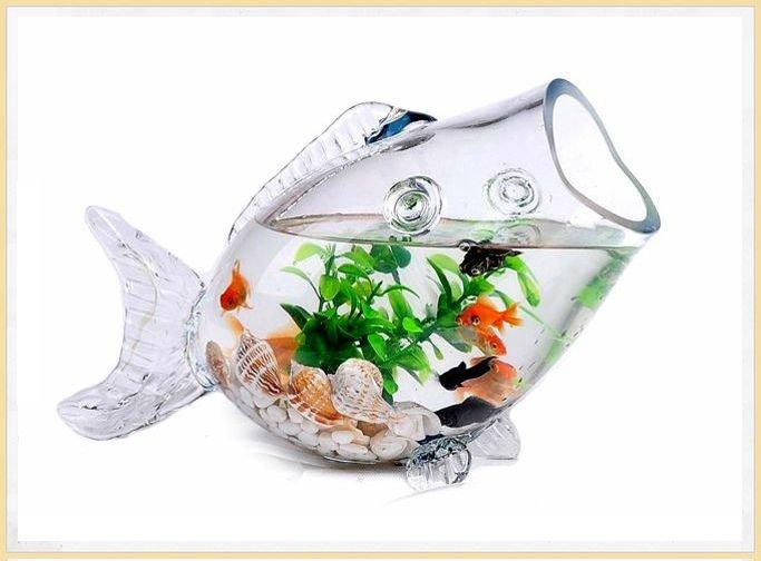 Fish shaped glass fish bowl stunning design glass for Fish shaped bowl