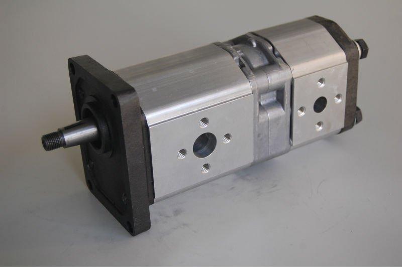 Hydraulic Gear Pump Design : Double hydraulic gear pump view