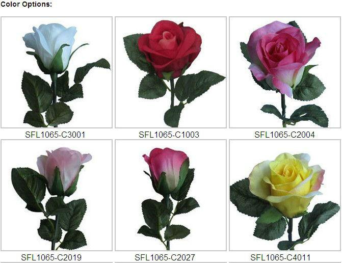 Download 80 Gambar Bunga Mawar Ungu Paling Keren