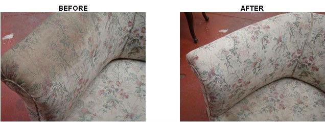 Delightful Sofa Clean Stain Remover 20oz Collar