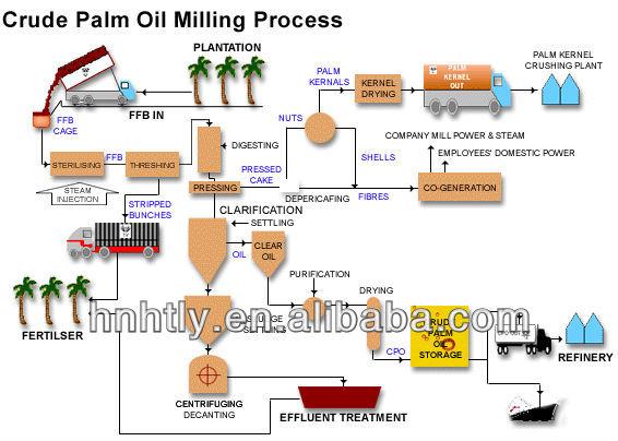Malaysia/indoneisa/nigeria Palm Oil Processing Machines