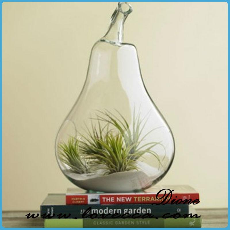 Light bulb glass vase air plant terrarium planter for Air vase