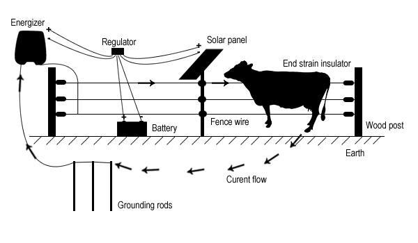 farm horse  cattle  livestock   ranch house fence 0 5j