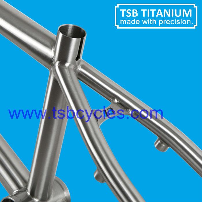 Venta Caliente Barato Titanium Bicicleta Bmx Tsb-bm1101 - Buy Bmx ...