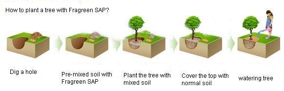 Water Retaining Plants : Moist crystal soil for plants buy water gel