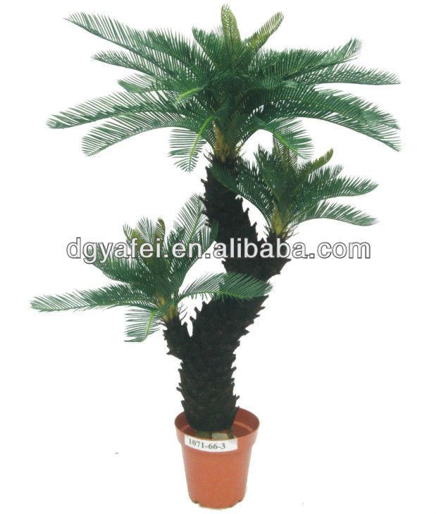 Felce bonsai faux piante cycas creare le foglie di seta for Innaffiare aloe vera