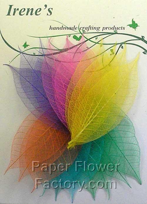 100 Esqueleto De Color Surtidos hojas de árboles de caucho y Banyan