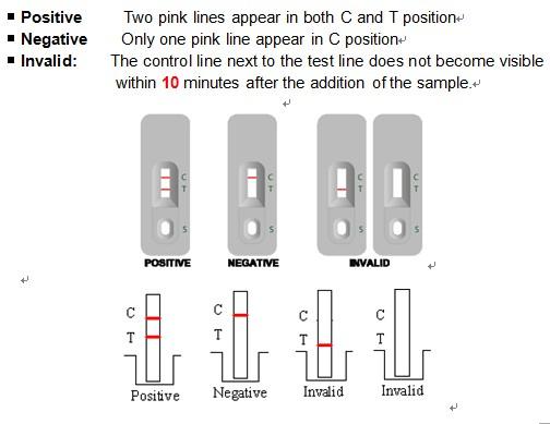 Blood Testing Kit Rotavirus Group A Antigen Test Kit