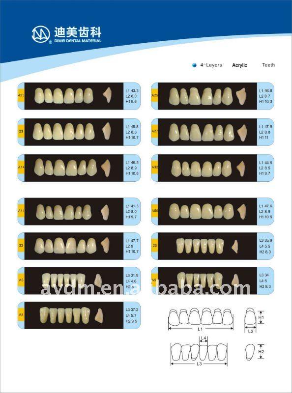 Dental Material Denture,Acrylic Teeth,Acrylic Resin Teeth Ce,Iso ...