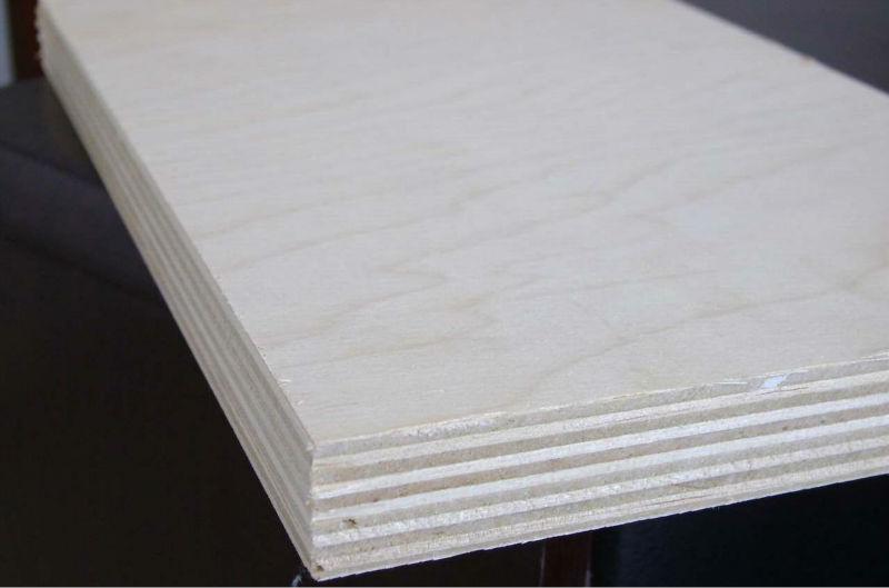 Ash Veneer Plywood ~ White ash veneer plywood natural buy