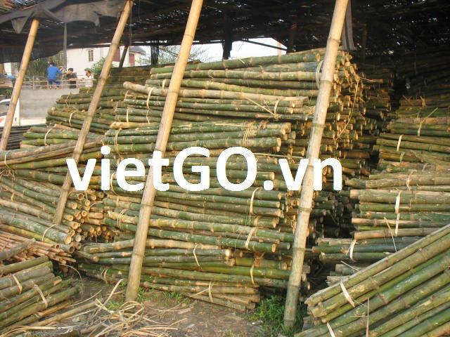 Schöne und heißer verkauf bambus fahnenstange buy bambusstangen