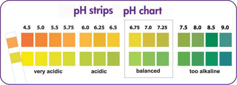Ph Strips Chart Peopledavidjoel