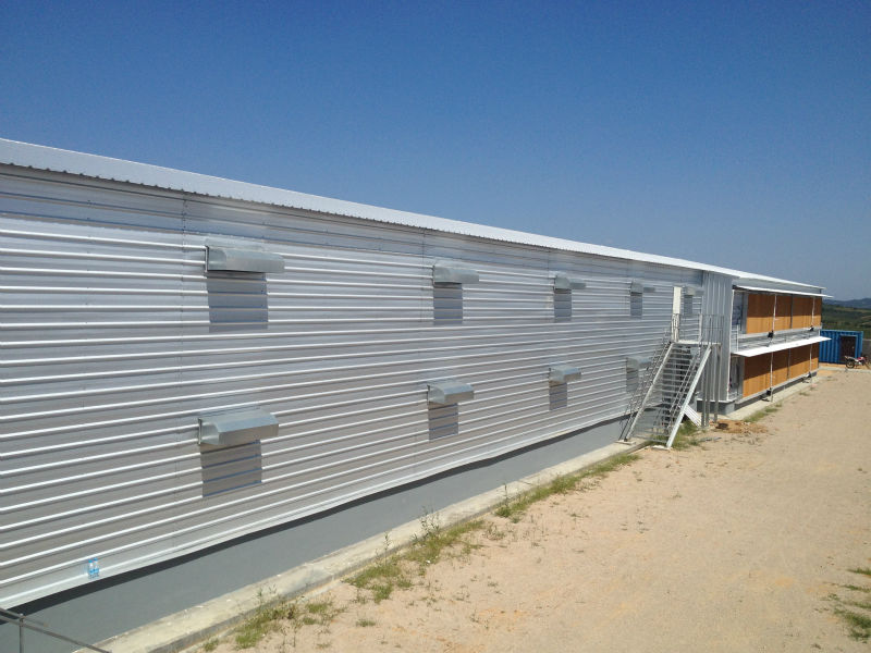 Prefab steel poultry shed for chicken farm