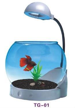 Glass mini fish tank led mini aquarium mini desk fish for Mini aquarium boule