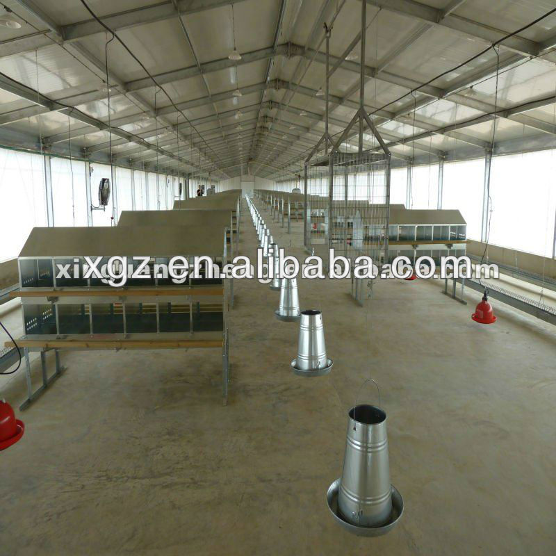 Design Broiler Chicken Farm House