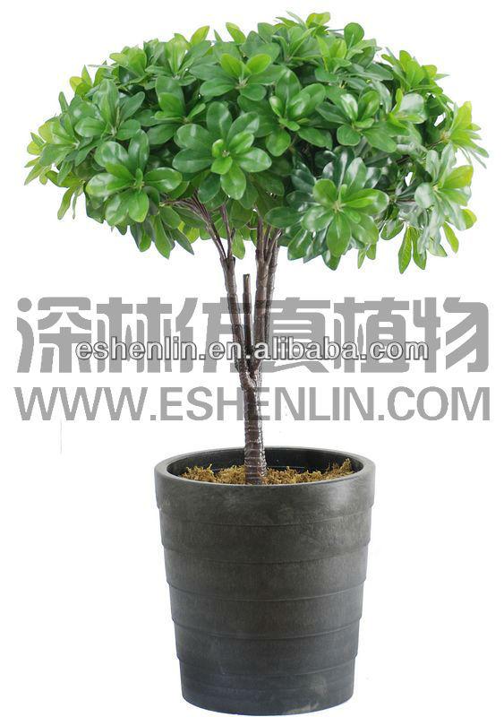 En forme de boule artificielle arbustes plantes vertes for Recherche sur les plantes vertes