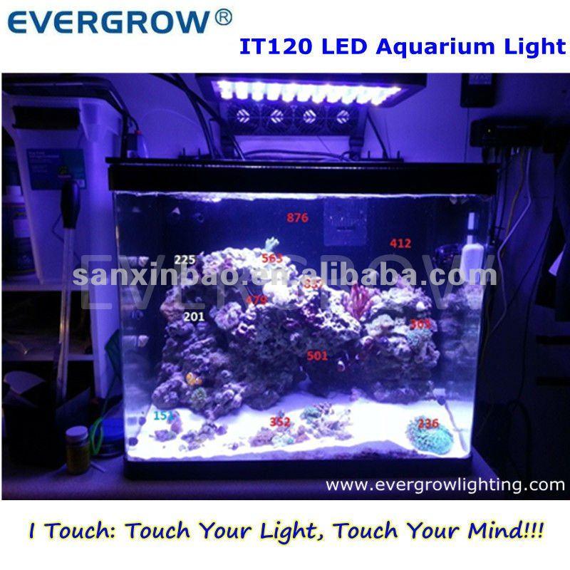 Evergrow It2040 Led Auto Dimmable Aquarium Night Lights