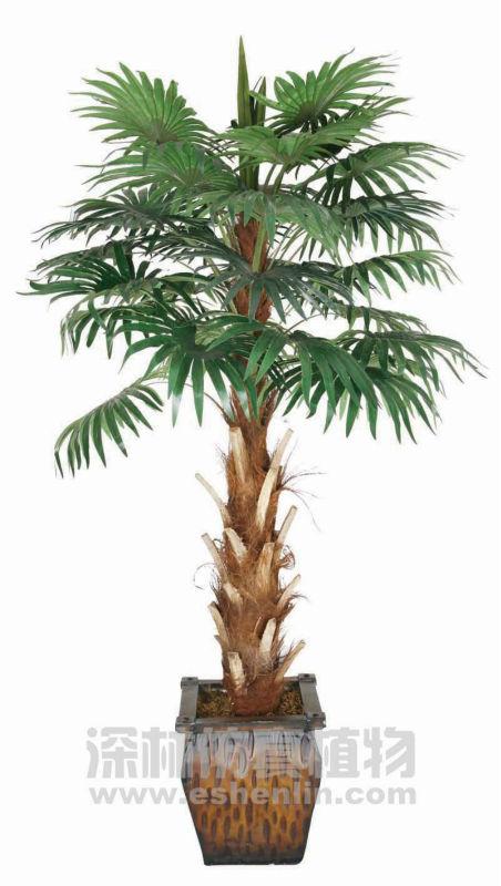 Types de palme artificielle arbres acier palmier en pot - Type de palmier ...
