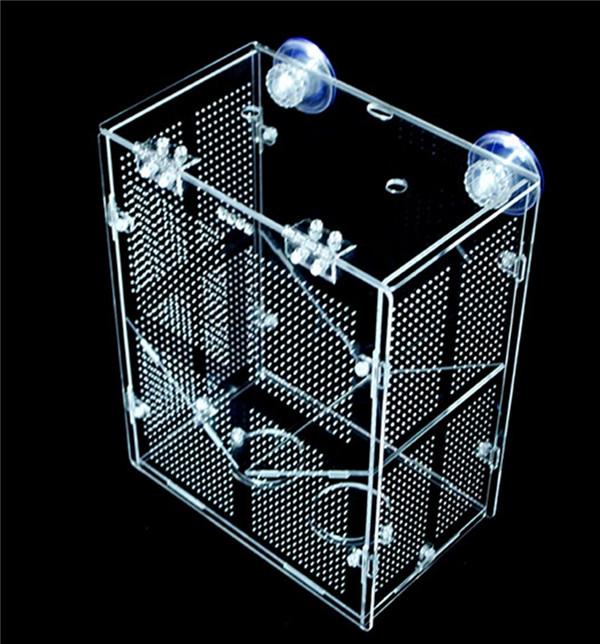 Aquarium fish breeding trap guppy breeder box buy for Fish breeder box