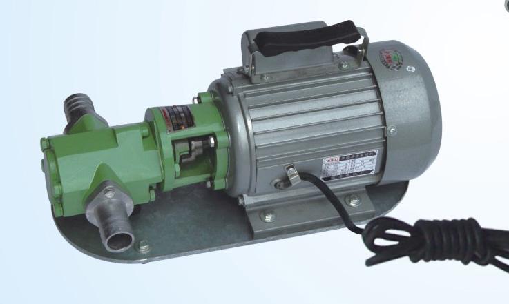 Portable Gasoline Benzene Transfer Pump Wcb Electric Oil