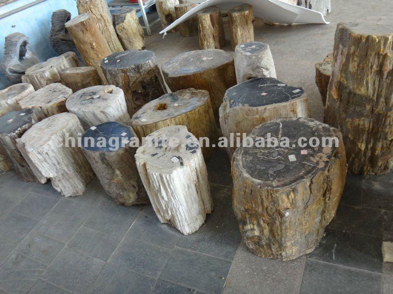 880 Koleksi Kursi Kayu Fosil Gratis