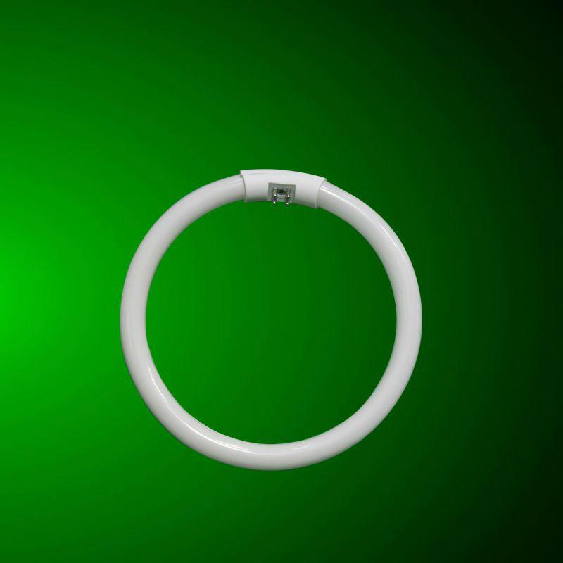 T5 G10q Circle Fluorescent Lamp 22w 32w 40w Buy T5 G10q