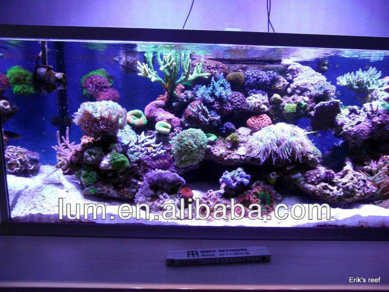 Marine Fish 100 Gallon Moonlight Led Aquarium Light Moonlight ...