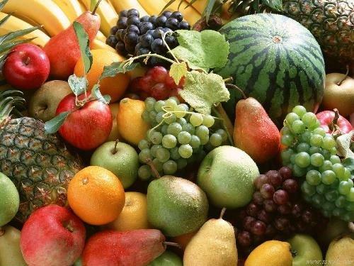 REALISTIC LOOKING U0026 FEELING ARTIFICIAL FRUIT U0026 VEGETABL Decorative  Vegetables
